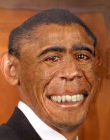 barack_obama_monkey.jpg