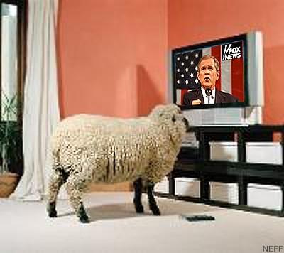 sheepFox.jpg